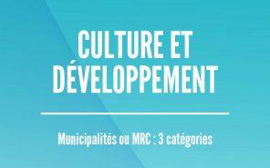 Prix Culture et développement